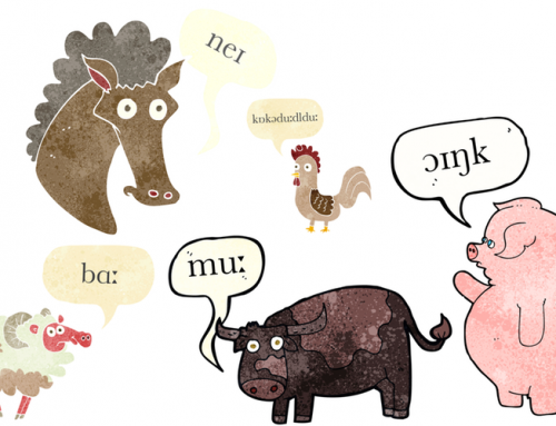 A Pronunciation Guide to Farm Animals
